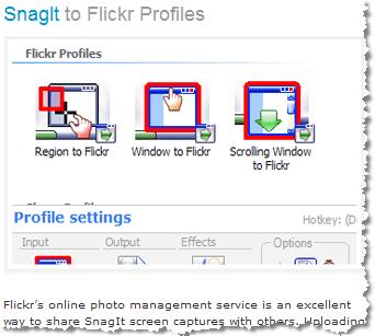Flickr Snagit